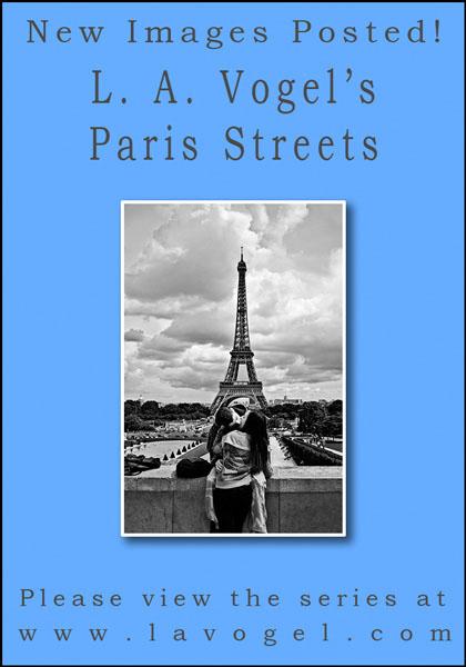 vogel-paris-streets