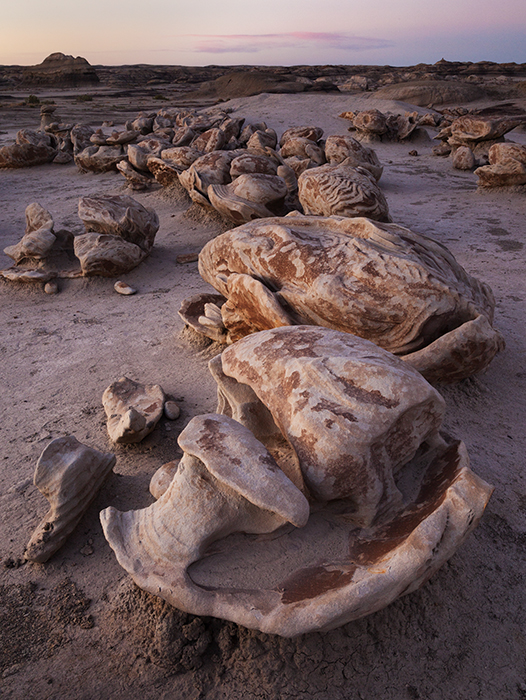 Bisti Badlands photos by tPE member Scott Mathews (3/3)