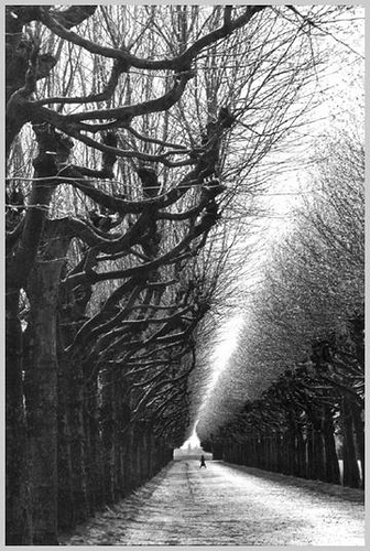 Copyright Martine Franck.