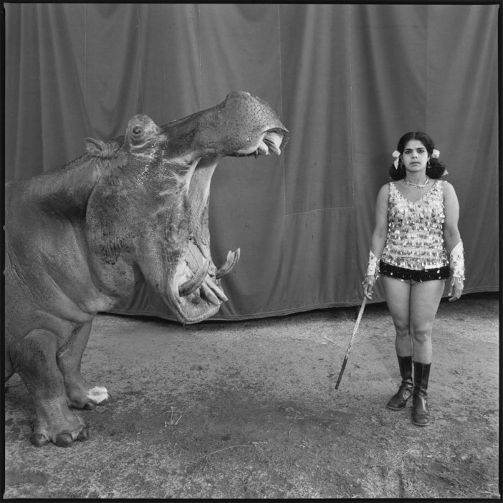 1_C_Mary_Ellen_Mark_Hippopotamus-4