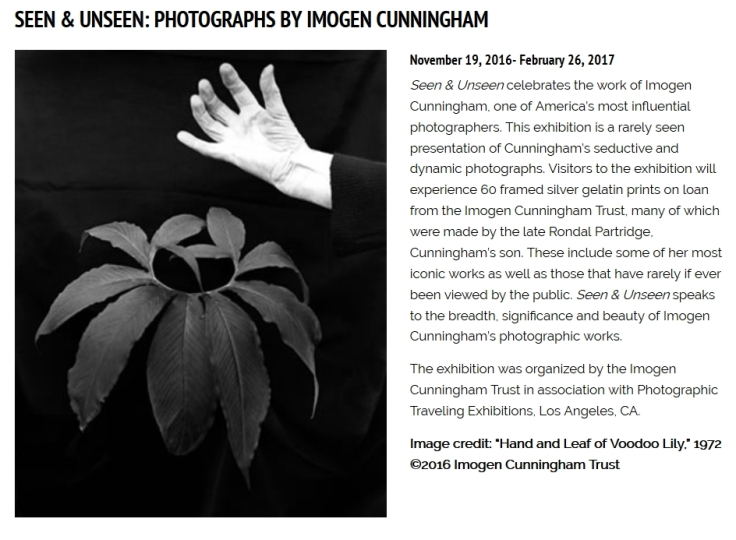 2016-11-05 17_08_26-Bowers Museum - Seen & Unseen_ Photographs by Imogen Cunningham.jpg