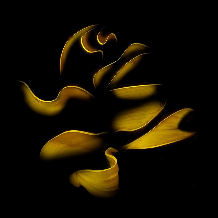 PaulAnderson-Yellow-1©2016.jpg