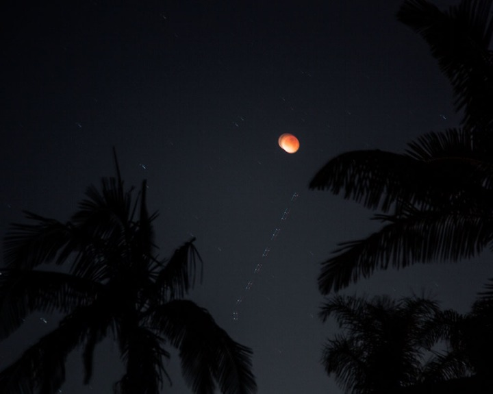 01-31-18_super_blue_blood_moon_n_plam_trees_ki6a8012_rsm.jpg