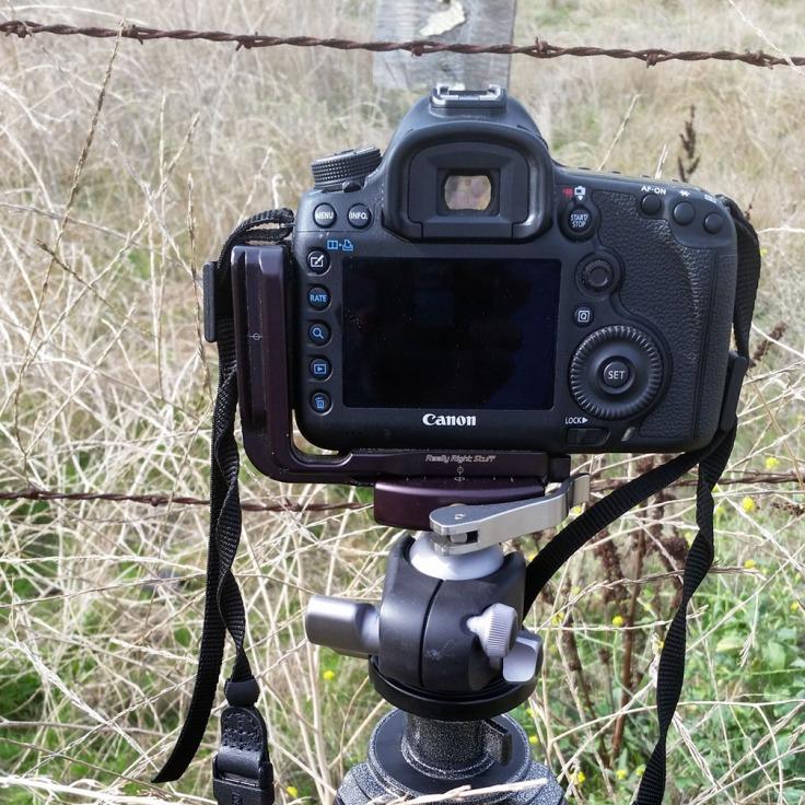 RRS BH-40 ball-head with Canon 5DMark3
