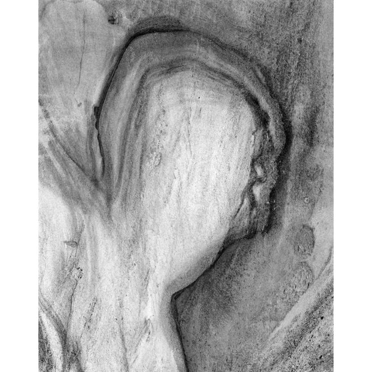 Roger Bennett 01 - Torrey Pines.jpg