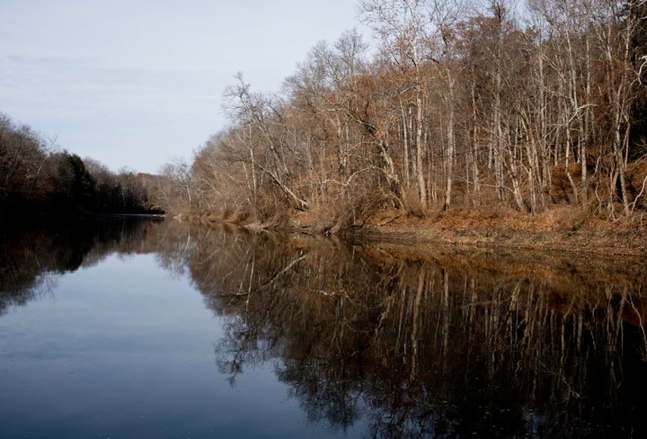Jan_Brueckner - Fall in Connecticut #2